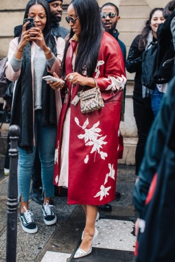 paris_fw2017_voguefr_day5__20170305_1920_jpg_7926_north_660x_white